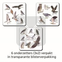 Set 6 Onderzetters Roofvogels