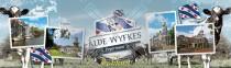 Dokkum Alde Wyfkes