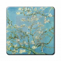 3d Onderz.V.V.Gogh Amandelbl.