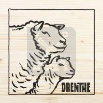 Onderzetter enkel hout laser Drenthe