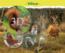 3d Hello Cards Veluwe