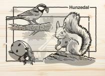 Ansichtkaart hout Hunzedal