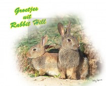 Hc Landal Rabbit Hill