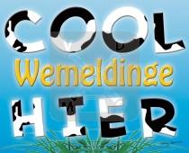 Hc Wemeldinge Cool Hier