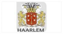 Mok 10oz Haarlem wapen