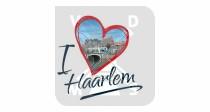 Mok 6oz Haarlem