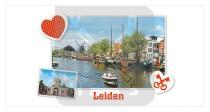 Mok 10oz Leiden