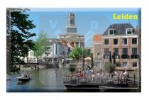 Magneet Doming Leiden