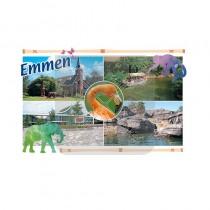 Magneet Doming Emmen