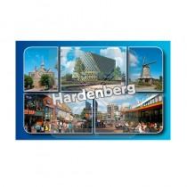 Magneet Doming Hardenberg