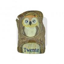 Houten magneet Twente