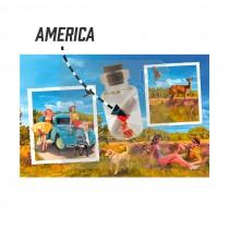 Magneet flesje brief America (3404839&)