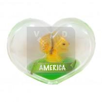 Magneet hart olie eekhoorn America (3405052&)