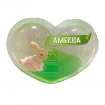 Magneet hart olie konijn America (3405051&)