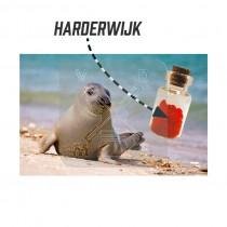 Magneet flesje hartjes Harderwijk (3404837&)