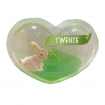 Magneet hart olie konijn Twente (3405051&)