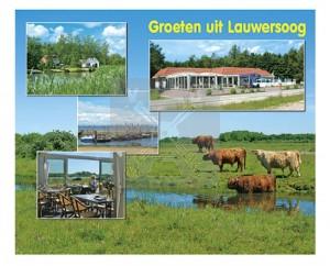 Hello Cards Lauwersoog